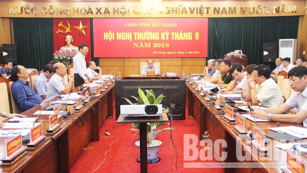 Chủ tịch UBND tỉnh Nguyễn Văn Linh: Tập trung chỉ đạo sản xuất, xử lý nợ đọng thuế